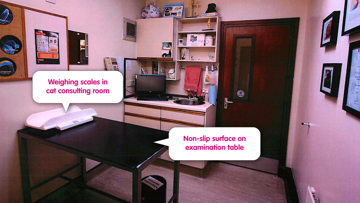 The consulting room cat friendly clinic for Apartment design criteria
