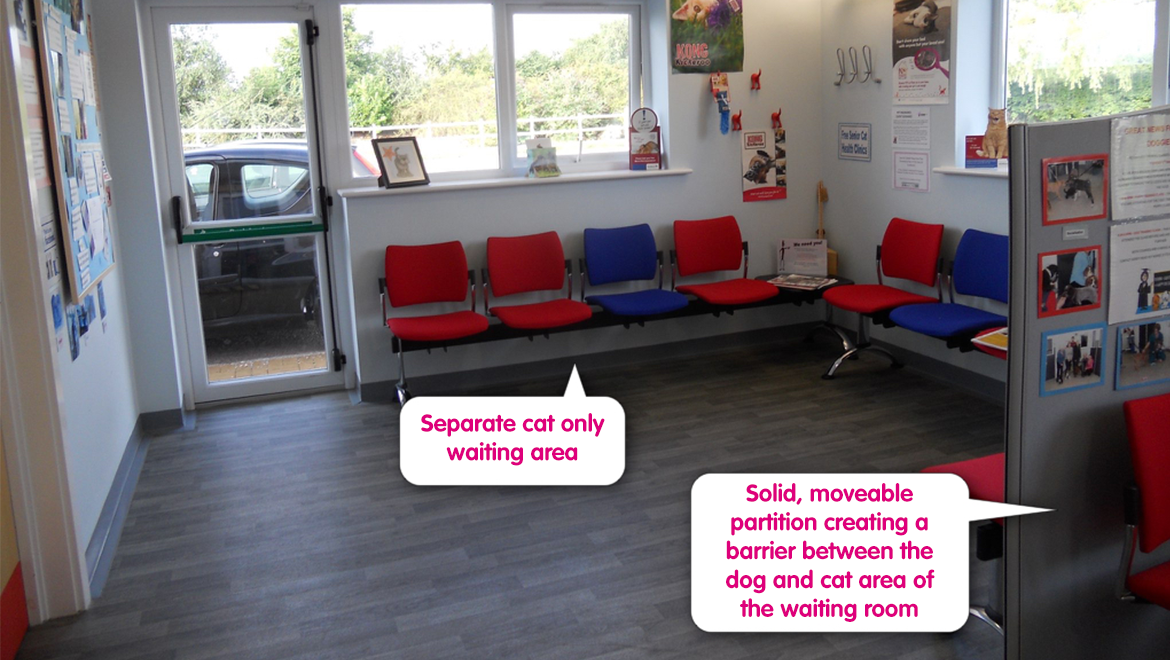 The waiting room | Cat Friendly Clinic